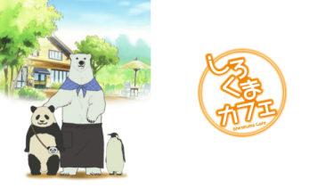 しろくまカフェのアニメ動画を全話無料視聴できるサイトまとめ